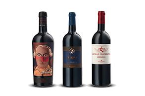 하이트진로, 이탈리아 대표 와인 '까스텔로 폰테루톨리' 출시