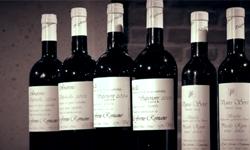 말린 포도로 만든 명품 와인, 아마로네