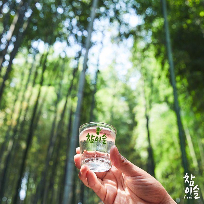 높은 하늘만큼이나 큰 키의 죽녹원 대나무 숲