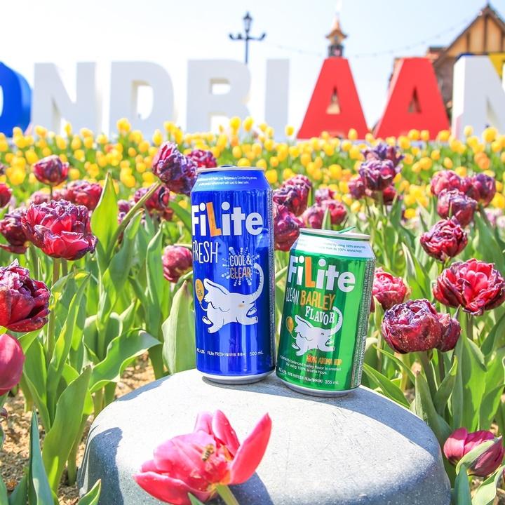 튤립과 함께 찾아온 봄의 향연!