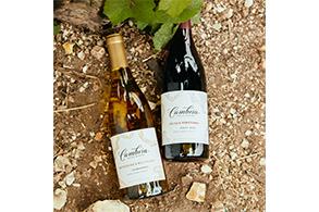 하이트진로, 캘리포니아 와인의 진주 '캠브리아' 출시