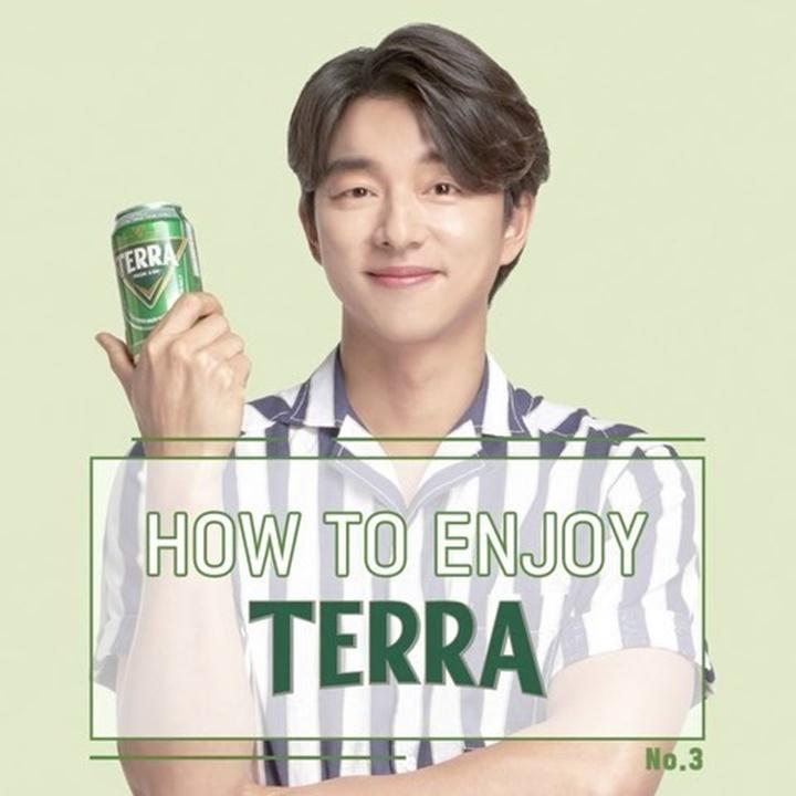 How to enjoy TERRA