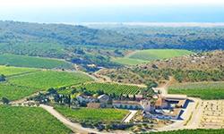 [와인명가] <br> 제라르 베르트랑(Gérard Bertrand), 생명력 있는 남 프랑스 와인의 예술
